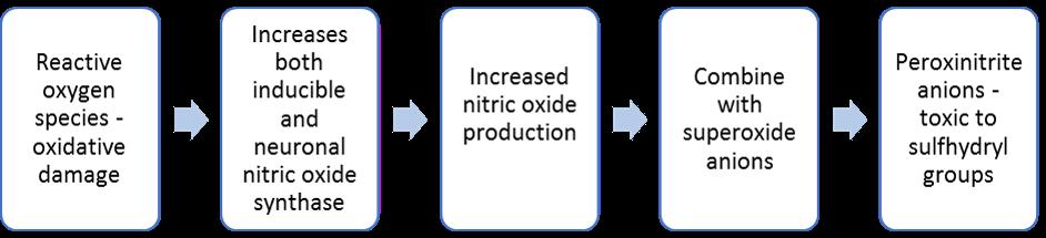 Figure 1. <b>Role of Nitric Oxide in Alzheimer's disease Pathogenesis</b>